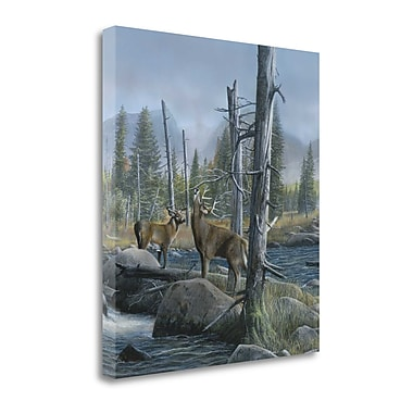 Tangletown Fine Art 'Elk Call' Print on Wrapped Canvas; 28'' H x 25'' W