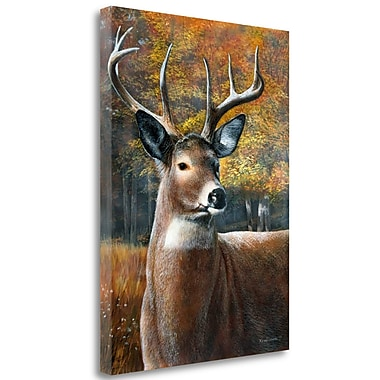 Loon Peak 'Deer Head II' Print on Wrapped Canvas; 39'' H x 28'' W