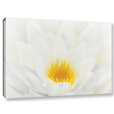 Alcott Hill White Waterlily Photographic Print on Wrapped Canvas; 16'' H x 24'' W x 2'' D
