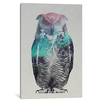 East Urban Home 'Aurora Borealis Series: Owl' Vertical Graphic Art on Wrapped Canvas