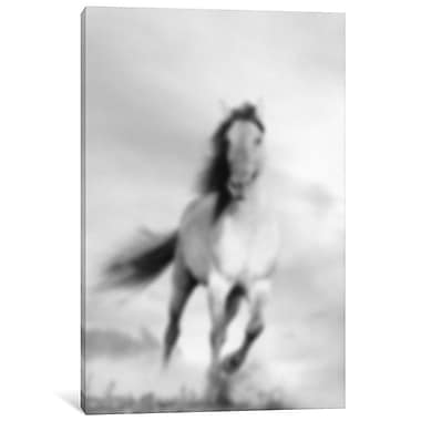 East Urban Home 'Blurred talon' Photographic Print on Wrapped Canvas; 12'' H x 8'' W x 0.75'' D