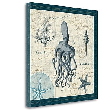 Tangletown Fine Art 'Ocean Life VII' Graphic Art on Canvas; 20'' H x 20'' W