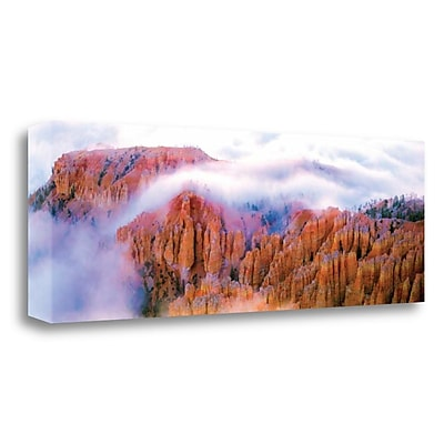 Tangletown Fine Art 'Foggy Bryce' Graphic Art Print on Canvas; 34'' H x 12'' W