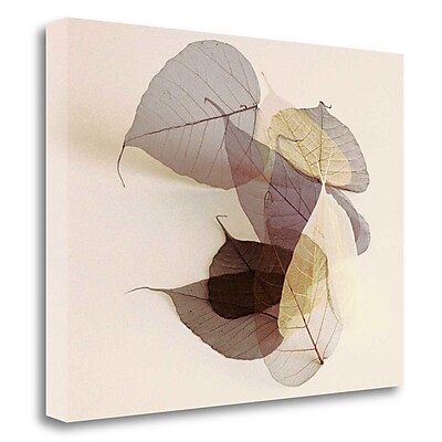 Tangletown Fine Art 'Sauvignon Blanc' Graphic Art Print on Canvas; 24'' H x 32'' W