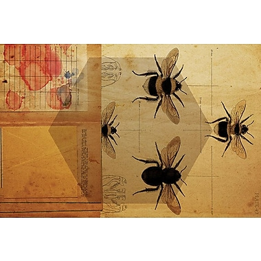 East Urban Home 'Apidae' Graphic Art on Wrapped Canvas; 8'' H x 12'' W x 0.75'' D