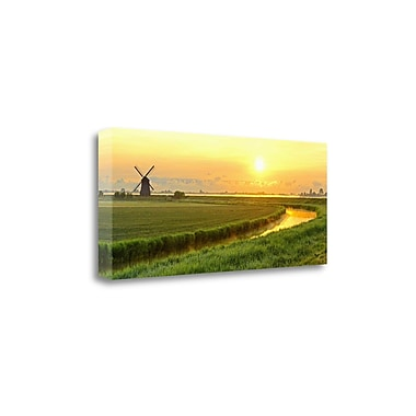Tangletown Fine Art 'Morning Meadow' Photographic Print on Canvas; 14'' H x 33'' W