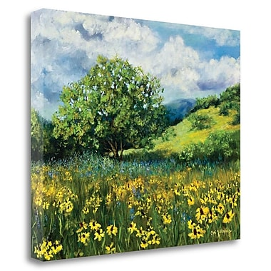 Tangletown Fine Art 'Oklahoma Natural' Print on Canvas; 22'' H x 28'' W