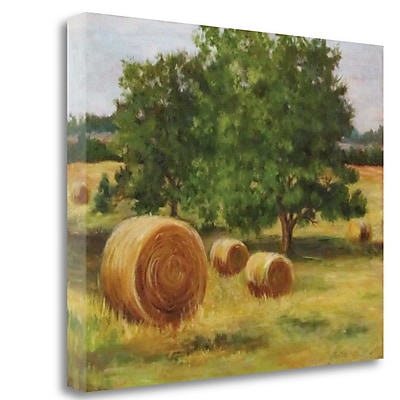 Tangletown Fine Art 'Bales of Hay' Print on Canvas; 25'' H x 32'' W