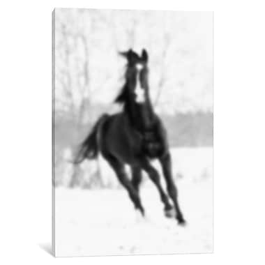 East Urban Home 'Blurred Cheval' Photographic Print on Wrapped Canvas; 12'' H x 8'' W x 0.75'' D