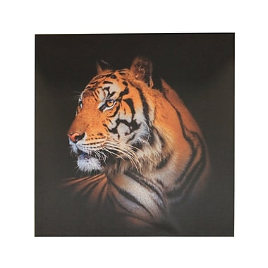 East Urban Home 'Tiger' Photographic Print on Canvas