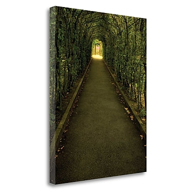 Tangletown Fine Art 'Tunnel of Shrub' Photographic Print on Wrapped Canvas; 32'' H x 25'' W