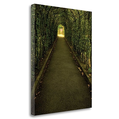 Tangletown Fine Art 'Tunnel of Shrub' Photographic Print on Wrapped Canvas; 23'' H x 18'' W