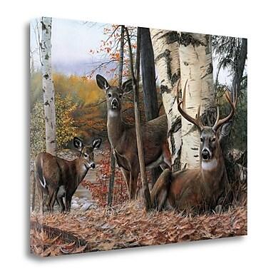 Tangletown Fine Art 'Autumn Majesty' Print on Canvas; 25'' H x 34'' W