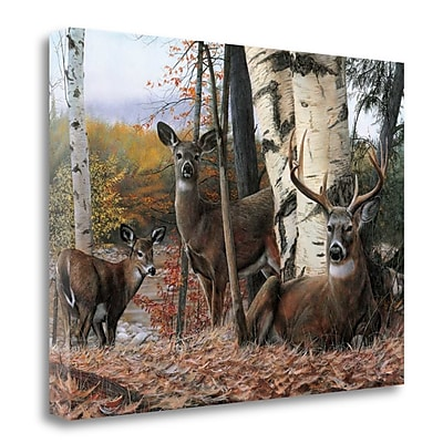 Tangletown Fine Art 'Autumn Majesty' Print on Canvas; 28'' H x 39'' W