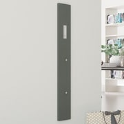Rebrilliant Wall Mounted Coat Rack; Anthracite