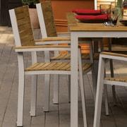 Latitude Run Farmington Rust Resistant Dining Arm Chair (Set of 2); Tekwood Natural