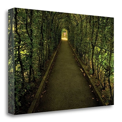 Tangletown Fine Art 'Tunnel of Shrub II' Photographic Print on Wrapped Canvas; 20'' H x 29'' W