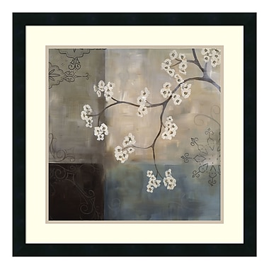 Amanti Art Framed Art Print 'Spa Blossom I' by Laurie Maitland, 25