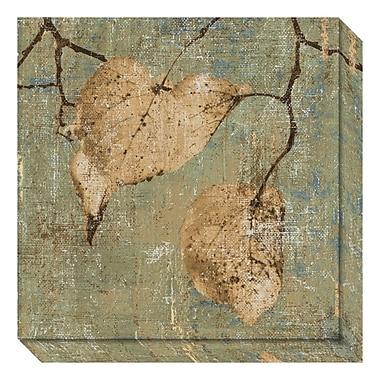 Amanti Art – Toile galerie par Pela + Silverman, évasion en campagne I : feuilles, 20 x 20 po (DSW3466675)
