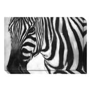 """Amanti Art Canvas Art Gallery Wrap 'Zebra' by Art Marketing, 30"""" x 20"""" (DSW3466708)"""