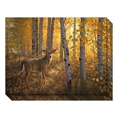 Amanti Art – Toile galerie par Greg Alexander, cerf parmi les peupliers, 24 x 18 po (DSW3466711)