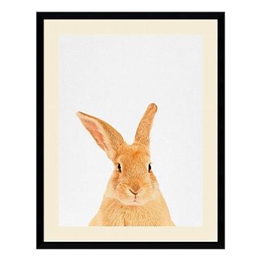 Amanti Art – Impression encadrée par Tai Prints, lapin, 23 x 29 po (DSW3926505)