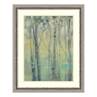 Amanti Art – Impression encadrée par Jennifer Goldberger, La lueur dans les arbres I, 26 x 32 po (DSW3315799)