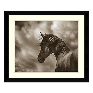 Amanti Art – Impression encadrée par Barry Hart, le cheval renégat, 33 x 28 po (DSW3317195)
