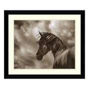 "Amanti Art Framed Art Print 'The Renegade Horse' by Barry Hart, 33"" x 28"" (DSW3317195)"