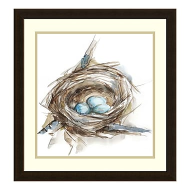 Amanti Art – Impression encadrée par Ethan Harper, étude de nid-d'oiseau II, 22 x 22 po (DSW3394782)