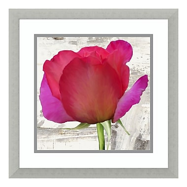 Amanti Art – Reproduction encadrée de « Spring Roses II » par Jenny Thomlinson, 18 x 18 po (DSW3419991)