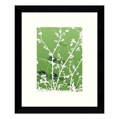 Amanti Art – Imprimé encadré « Autumn Branch (green) » par Jenny Kraft, 9 x 11 po (DSW3422466)