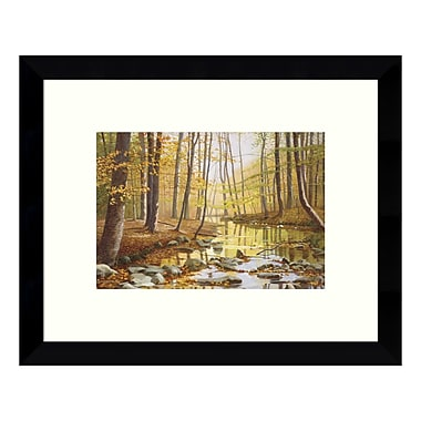 Amanti Art Framed Art Print 'Golden Flow Forest' by Gene McInerney, 11