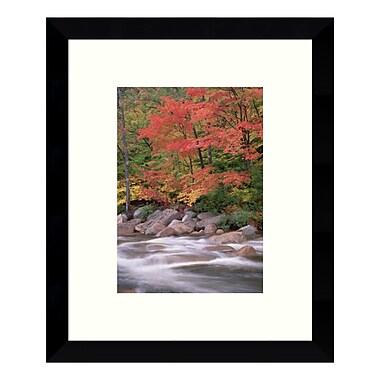 Amanti Art – Impression encadrée de « Autumn Along Swift River, New Hampshire (II) » par Tim Fitzharris, 9 x 11 po (DSW3428285)