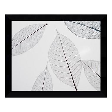 Amanti Art – Impression encadrée, « Feuilles translucides I » par Art Photo, 11 x 9 po (DSW3451142)