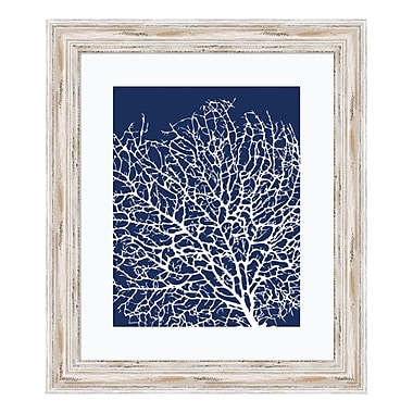 Amanti Art – Reproduction encadrée de « Navy Coral I » de Sabine Berg, 19 x 22 po (DSW3581346)