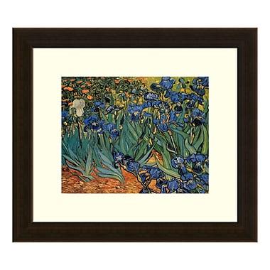 Amanti Art – Imprimé encadré « Irises in the Garden, 1889 » par Vincent Van Gogh, 16 x 14 po (DSW3581617)