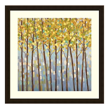 Amanti Art Framed Art Print 'Glistening Tree Tops' by Libby Smart, 26