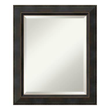 Amanti Art – Miroir de salle de bain moyen, pour armoire standard de 24 à 28 po, bronze Signore, 21 x 25 po (DSW3572563)