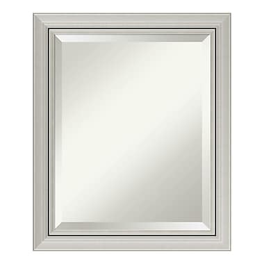 Amanti Art Wall Mirror Medium, Romano Silver, 20