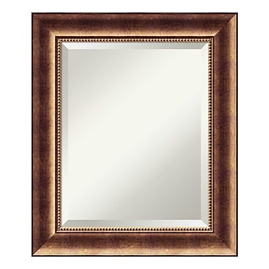 Amanti Art Bathroom Mirror Medium, Fits Standard 24
