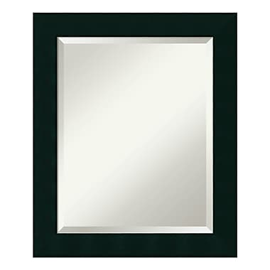 Amanti Art – Miroir mural moyen, noir Tribeca, 20 x 24 po (DSW01019)