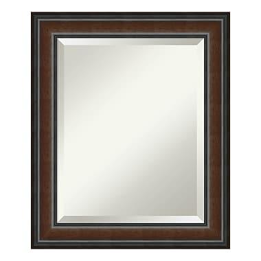 Amanti Art – Miroir de salle de bain moyen pour armoire standard de 24 à 28 po, noyer Cyprus, 21 x 25 po (DSW3942032)