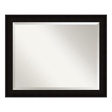 Amanti Art – Grand miroir de salle de bain pour armoire standard de 30 à 36 po, noir Manteaux, 32 x 26 po (DSW3942037)