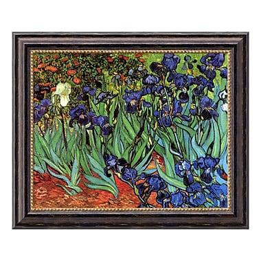 Amanti Art – Toile encadrée de « Irises In The Garden, 1889 » par Vincent Van Gogh, 24 x 20 po (DSW01535)