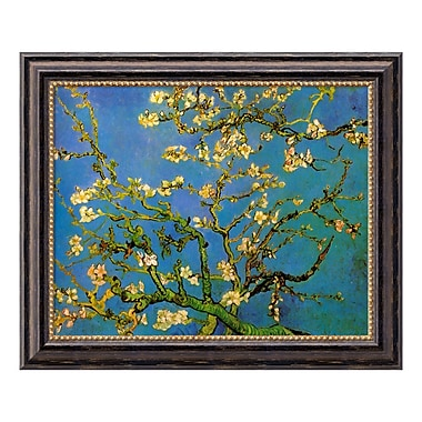 Amanti Art Canvas Art Framed 'Almond Branches in Bloom, San Remy 1890, detail (iii)' by Vincent van Gogh, 24