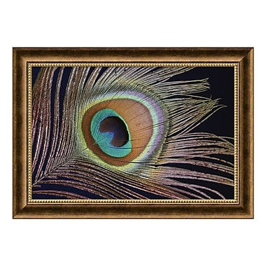 Amanti Art – Toile encadrée de « Sumptuous », 28 x 20 po (DSW579285)