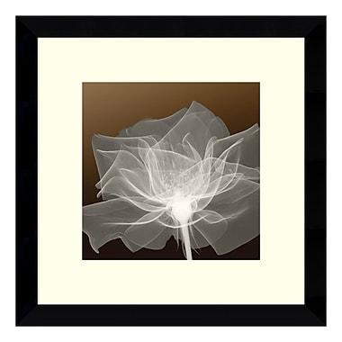 Amanti Art – Reproduction encadrée de « Sheer Delicacy », 13 x 13 po (DSW140896)