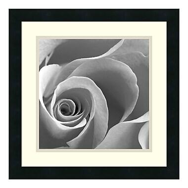 Amanti Art – Reproduction encadrée de « Rose Spiral II », 18 x 18 po (DSW140475)