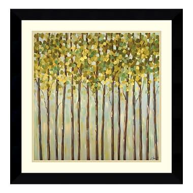 Amanti Art – Reproduction encadrée de « Different Shades of Green » par Libby Smart, 27 x 27 po (DSW114036)